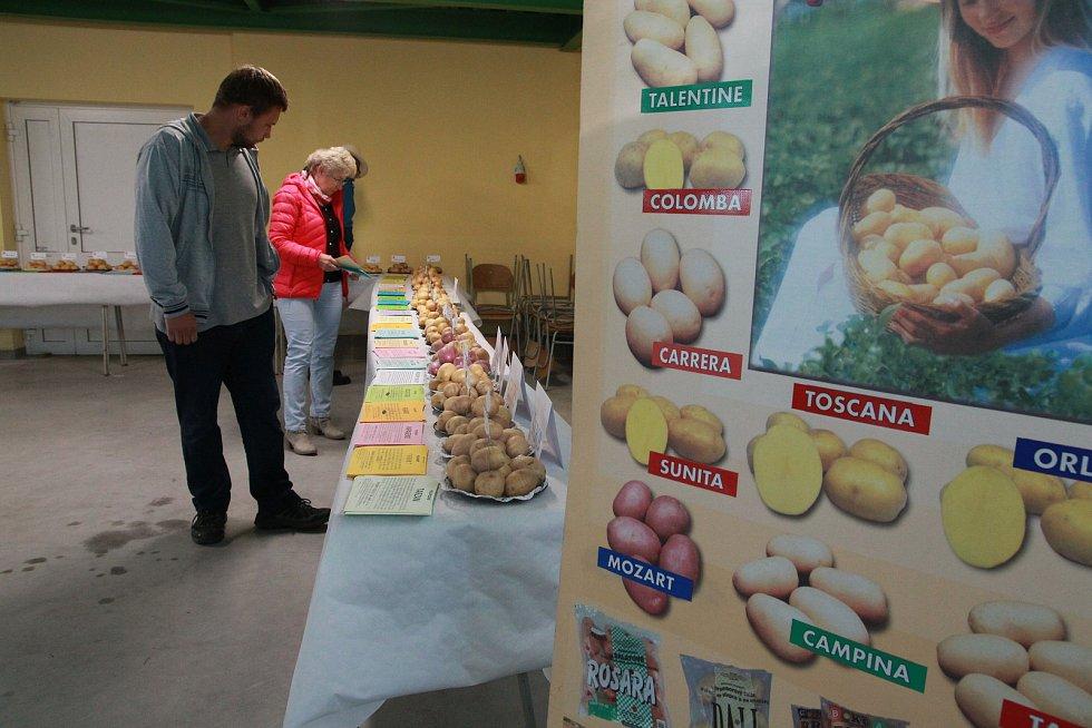 Součástí programu polního dne o bramborách na humpoleckém školním statku  byla prezentace odrůd brambor.