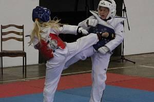Trenér a pořadatel turnaje v Pelhřimově Petr Lacek taekwondo WTF hájí. Četností zranění je prý na úrovni fotbalu či hokeje.