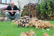 Milan Hála z Bohdalína na Pelhřimovsku si každým rokem pochvaluje velkou nadílku hub na své zahrádce.