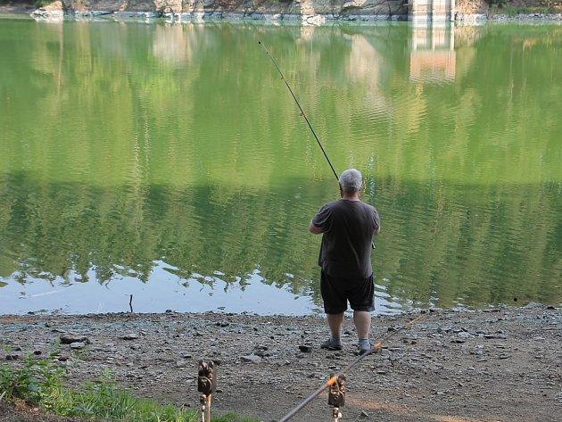 František Ščepka z Humpolce nahazuje už týden pruty do zelené sedlické vody.