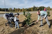 V Pelhřimově vysadili tisící strom za dítě; Foto z pelhřimovské radnice