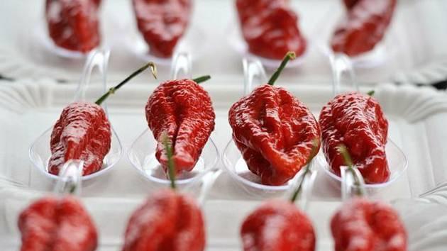Chilli papričky. Ilustrační foto