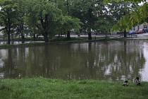 Strachovské rybníky jsou plné, ale vylitím nehrozí.