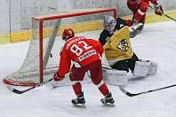 Hokejisté Pelhřimov. Ilustrační foto.