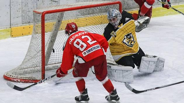 Hokejisté Pelhřimova. Ilustrační foto.