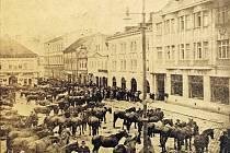 Na snímku je vidět mobilizace koní na pelhřimovském Masarykově náměstí.