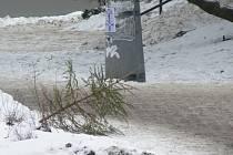 Odzdobené vánoční stromky patří do kontejnerů, ne na ulice či silnice jako tomu bylo například před lety, kdy někdo zanechal stromeček přímo na ulici u pelhřimovského kina.