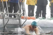 Plavání otužilců