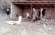 """Se zvětšujícím se zájmem o sportovní střelbu bylo rozhodnuto o stavbě nové, větší střelnice. V srpnu roku 1977 MNV Košetice vydalo stavební povolení. Zděná stavba s hliníkovou krytinou byla provedena v akci """"Z"""". Na obrázku práce na podlaze střeliště z dub"""