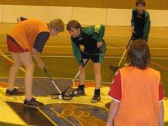 Žáci základních škol z celého Pelhřimovska se v úterý přes den zúčastnily florbalového turnaje. Ten se konal na dvou místech v Pelhřimově. A to ve sportovní hale a v tělocvičně na základní škole Osvobození.