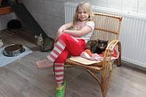 Kočičí azyl ve Skrýšově u Polné