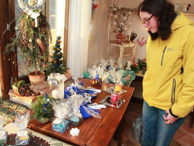 Jedna premiérová vánoční výstava zve nyní k návštěvě v Pelhřimově, a to doslova jen na několik desítek hodin.
