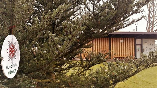 Tip na výlet: procházka vánočním Humpolcem
