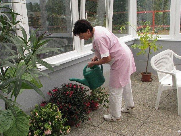 V nové zimní zahradě dělají parádu první květináče. Postupem času jich tam ještě přibyde.