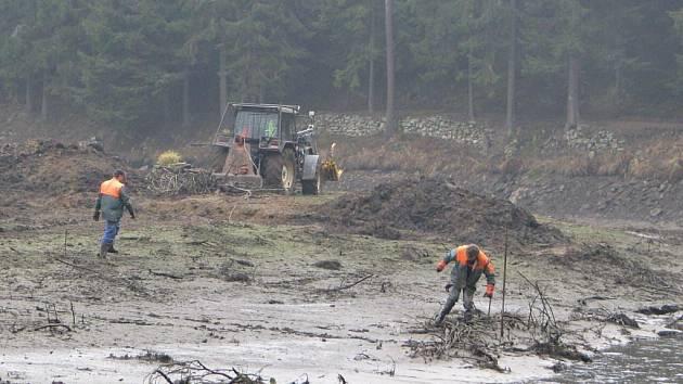 Pracovníci  se potýkají s větvemi a kmeny, které musí odstranit před samotným odbahňováním.