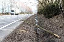 Spadlé stromy a větve komplikovaly dopravu.