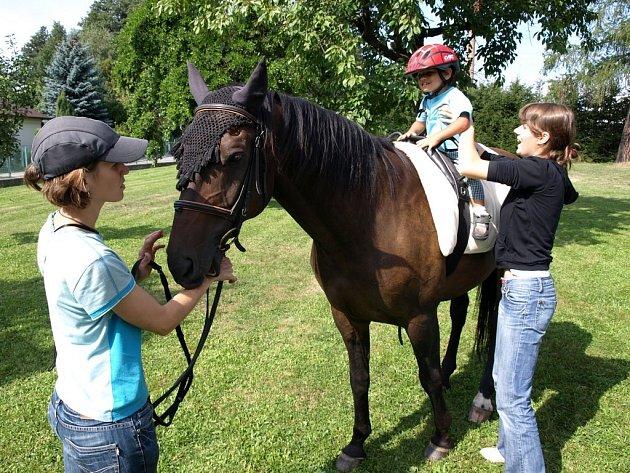 Statný kůň Like budil zejména v menších dětech velký respekt. Některé z nich, když se přímo před něho postavily, raději rychle sundávaly z hlavy přilbu. Většina malých obyvatel kamenického dětského domova se do sedla s chutí vyškrábala