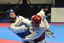 Taekwondista Jan Fiala sní o startu na olympiádě.