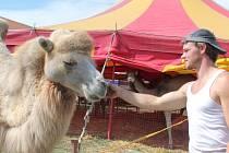 Zastavení slavného cirkusu Humberto v Pelhřimově finišuje.