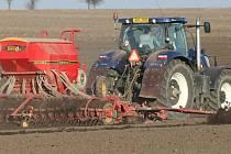 Chladné počasí několika posledních dní vliv na úrodu nemá.
