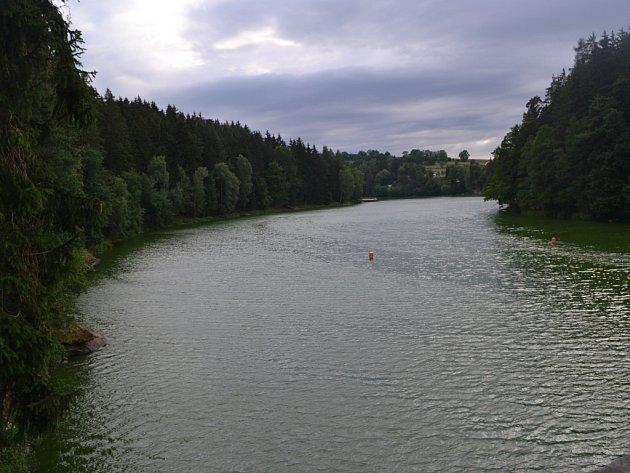 Zelená Sedlická přehrada už od pohledu ke koupání příliš neláká.