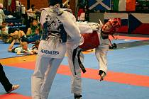 JE NA CO NAVAZOVAT. Iveta Jiránková na minulém mistrovství světa došla do čtvrtfinále.