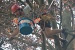 """Soutěžící nejdříve museli """"nahodit"""" lano s vrhacím váčkem do koruny stromů. Pak následoval výstup nahoru a plnění úkolů na čtyřech stanovištích. Závodníci například museli házet kolík ze zavěšeného kyblíku do terče na zemi."""