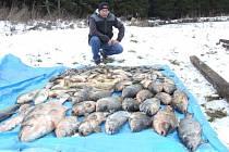 Osm set kilo ryb je v nenávratnu. Škoda včetně likvidace se vyšplhala na osmdesát tisíc korun.