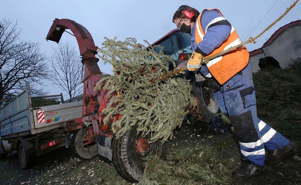 Svoz vánočních stromků. Ilustrační foto