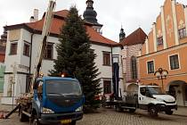Vánoční strom na Masarykově náměstí v Pelhřimově.