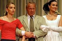 Divadelní představení začíná v pelhřimovském divadle ve středu 13. února od 19.30. V hlavních rolích se představí Lucie Zedníčková, Marcel Vašinka, Mahulena Bočanová a další.