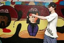 Graffiti nemusí být nutně spojovány s vandalskými nápisy na památkách nebo na zdech obytných domů. V pelhřimovském podchodu působí jako umělecké dílo.  Iniciátor projektu Jakub Brnický popisuje, jak jednotlivé motivy obrázků vznikly.