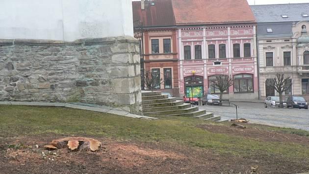 Kácení zeleně v Pacově.