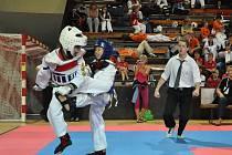 Velmi úspěšní byli bojovnící klubu Taekwondo Lacek na mistrovství republiky. K medailovým žním přispěl stříbrem František Martínek (vlevo).