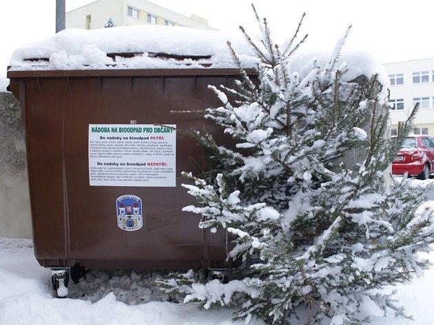 V pelhřimovské Friedově ulici je před panelovými domy umístěn bio kontejner, který slouží především k likvidaci vánočních stromků. Do včerejšího dopoledne do něj žádný stromek vhozen nebyl, našel se pouze jeden, který byl umístěn mimo něj.