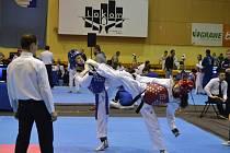 Velmi dobrého výsledku dosáhli na turnaji v Sarajevu pelhřimovští taekwondisté. Podílela se na tom i Anna Hostičková, která je na snímku vlevo.