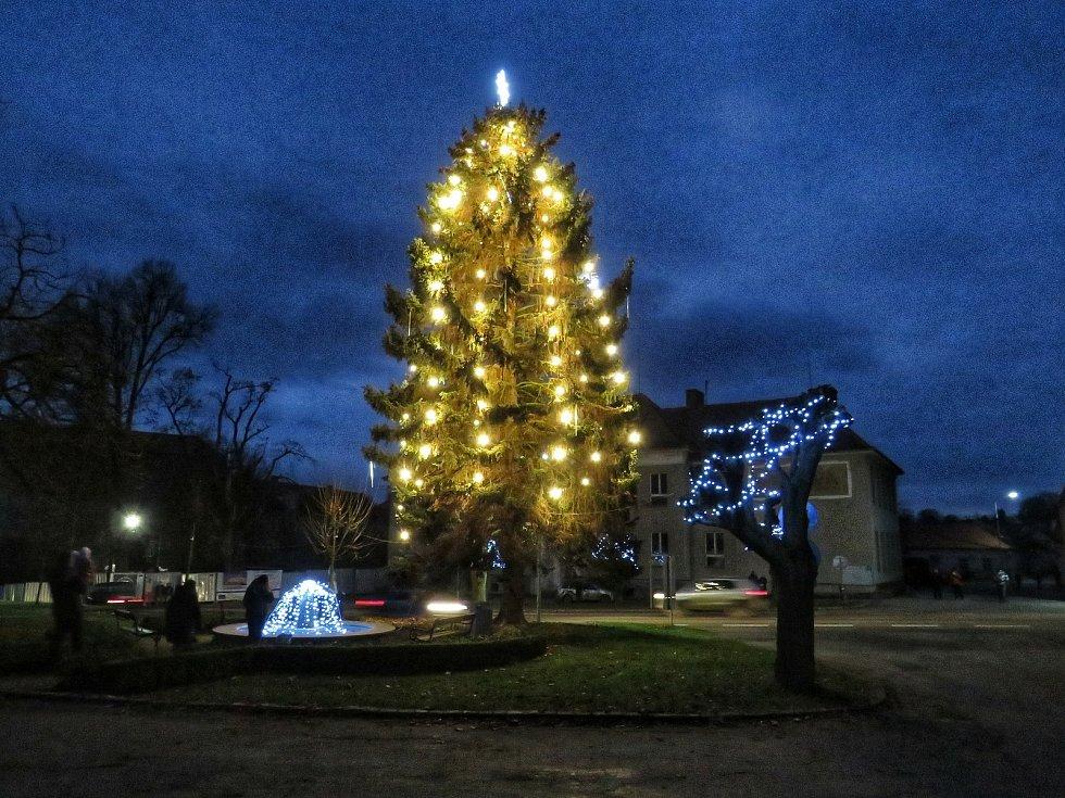 Vánoční strom a výzdoba v Červené Řečici