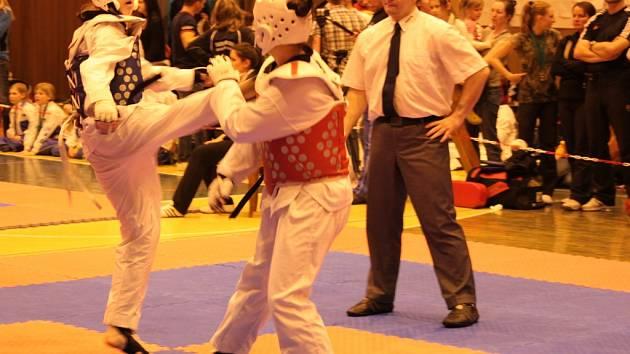 Letos se poprvé bude v pelhřimovské hale bojovat na pěti tatami.