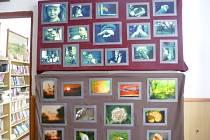 Výstava ve vyskytenské knihovně