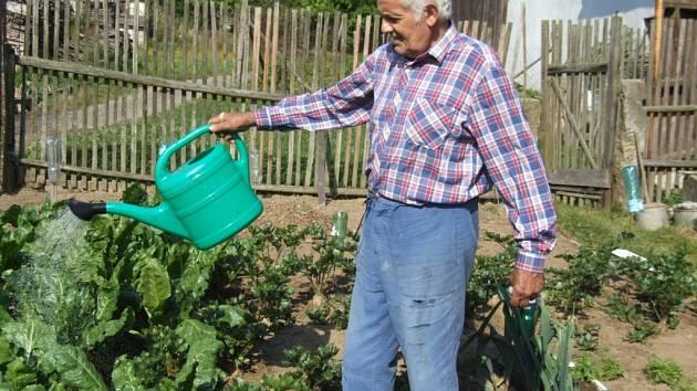 Voda v Chrástově není vhodná k pití. Vyprahlé zelenině na zahrádce ale zvýšený obsah dusičnanů nevadí.