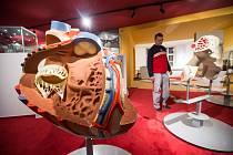 Muzeum Dr. Aleše Hrdličky v Humpolci dokončuje modernizaci antropologické expozice.