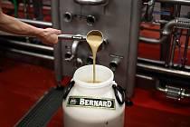 Humpolecký Pivovar Bernard rozdával kvasnice a slad minipivovarům.