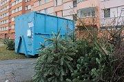 Likvidace vánočních stromků.