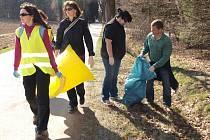 Společnými silami v pondělí odpoledne uklidili prostranství kolem silnice vedoucí z Vlásenice směrem k Pelhřimovu klienti, zaměstnanci a dobrovolníci Fokusu Vysočina.