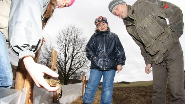 Bez pomoci ochránců přírody by se řada žáb na jaře přes silnici k vodě nedostala. V Kamenici na Jihlavsku se už před časem ujali záslužné práce školáci.