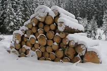 Menší hromady dřeva byly ještě v úterý k vidění v lese u Milotiček poblíž Červené Řečice.