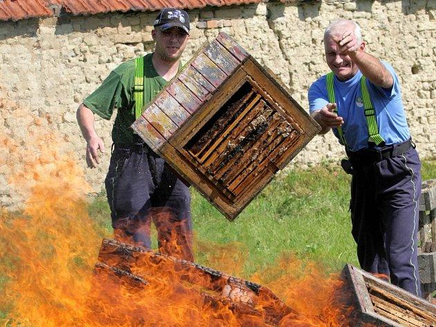 Pokud výsledky vyšetření výskyt moru včelího plodu potvrdí, včelař musí napadená včelstva  zlikvidovat.