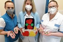 Děti věnovaly kamínky zdravotníkům pelhřimovské nemocnice