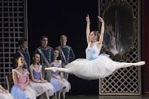 Bohemia balet. Ilustrační foto