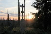 NP Šumava - poblíž Modrého sloupu